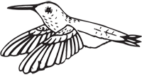 Clipart Image For Headstone Monument Bird 28