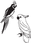 Clipart Image For Headstone Monument Bird 35