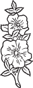 Clipart Image For Headstone Monument flower 05