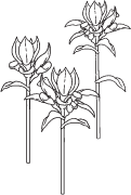 Clipart Image For Headstone Monument flower 06