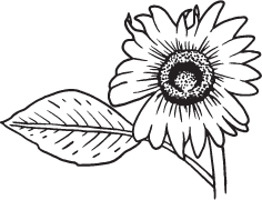 Clipart Image For Headstone Monument flower 09