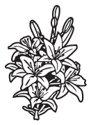 Clipart Image For Headstone Monument flower 21