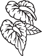 Clipart Image For Headstone Monument flower 42