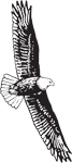 Clipart Image For Headstone Monument Eagle 14